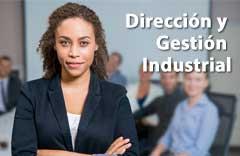 curso direccion gestion industrial