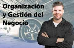 curso organizacion gestion negocio